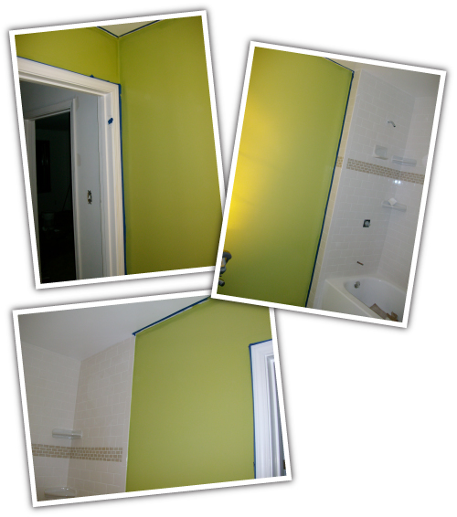 Bathroom Paint 1