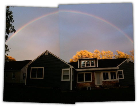 WRKDesigns: Rainbow